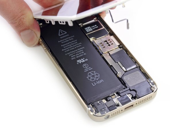 Image 3/3: Alas, our first peek at the internal layout of the 5s. Comparing it to the [guide|10525|iPhone 5|stepid=38280], we spot very few differences, the main one being the lack of a battery removal pull-tab.