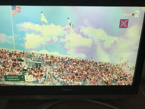 SOLVED: I have a green tint on all the faces on the tv - Television