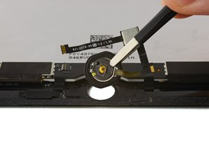 Home Button Assembly