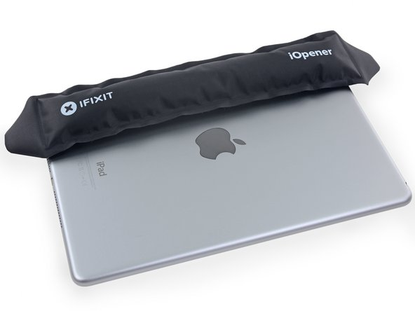 Place a heated iOpener on the lefthand side of the back of the iPad for 2-3 minutes.