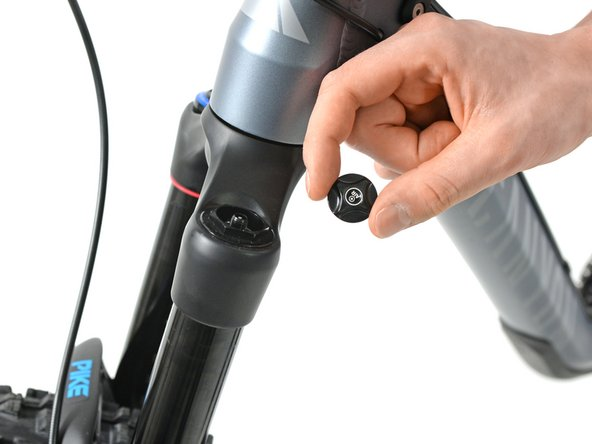 Remove the cap on the left side of the suspension fork.