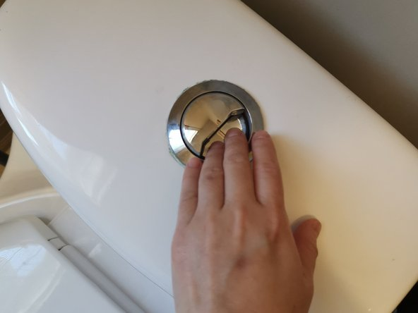 Flush the toilet in order to empty the water tank and the bowl.