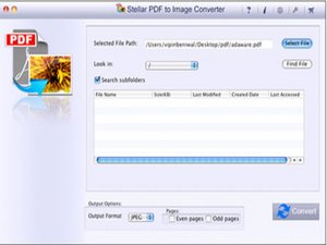 Convert PDF to JPEG, BMP, PNG and TIFF file formats