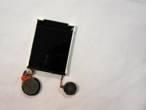Place phone body and LCD screen on a clean, lint-free surface.