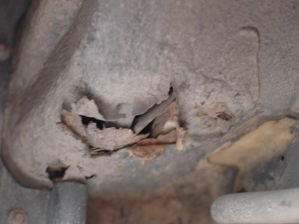 Check under all four fenders for rust. This rust hole is on the front passenger side fender and is caused by battery corrosion. Rust can happen in any fender due to salt build up and corrosion.