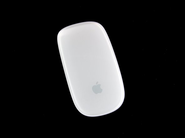We have a special guest tonight in the audience. From Cupertino, California, it is our pleasure to introduce the world's first mouse to use Apple's revolutionary Multi-Touch technology, the Magic Mouse.