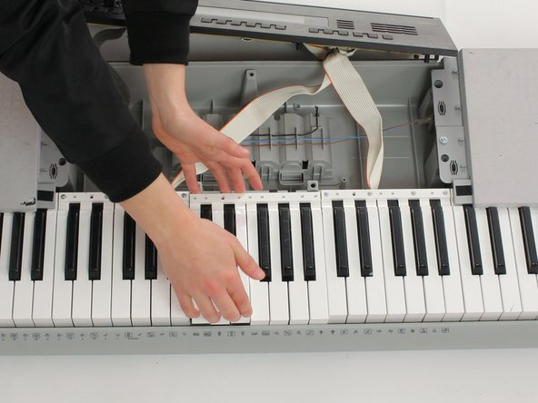 Gently push white keys away from screws and pull up to remove from keyboard. Repeat this with the black keys