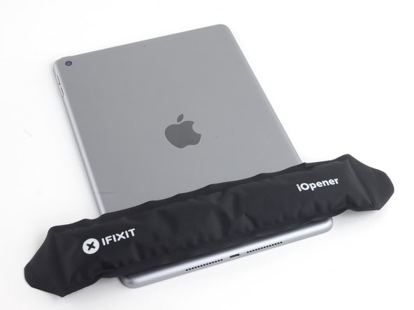 Place a heated iOpener along the bottom edge of the iPad.