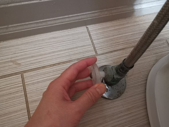 How to Unclog a Toilet Drainpipe