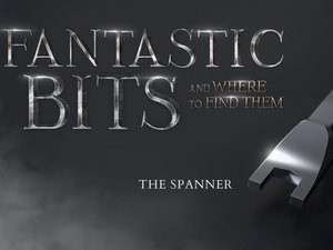 Fantastic Bits and Where to Find Them: The Spanner