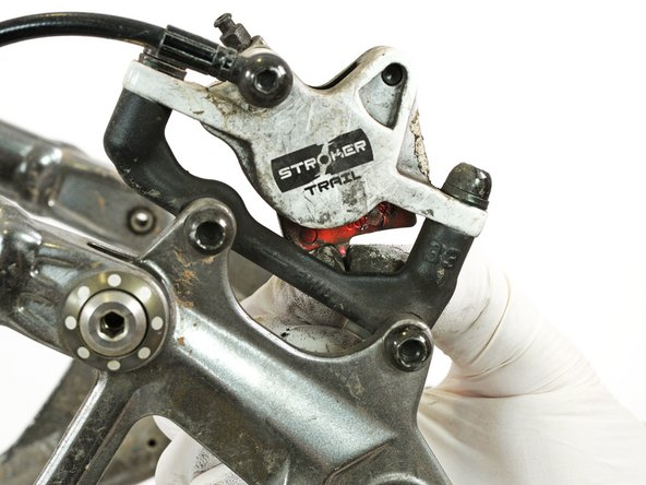 Remove the brake pads from the brake caliper.