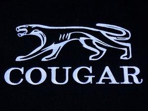 Ford Mercury Cougar Repair
