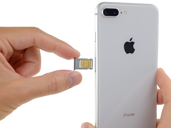 Remove the SIM card tray from the iPhone.