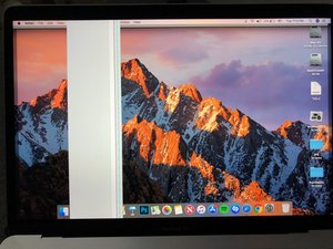 SOLVED: MacBook Pro 2017 Display Glitching Very Badly - MacBook Pro