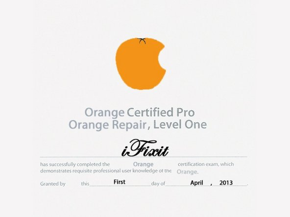 Image 2/2: Do not attempt this procedure at home. We are Orange-certified repair technicians.