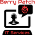 Berry Patch IT Services's profile