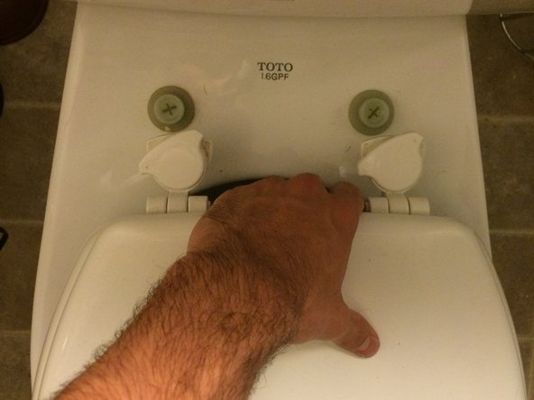 Twist the tops of the hinges of the currently installed toilet seat and pull toilet seat off to expose the screws.