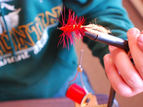 Next, put your hackle on. Strip the bottom of the hackle feather so it's just the middle part of the feather.